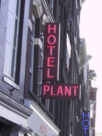 Hotel Plant, Amsterdam