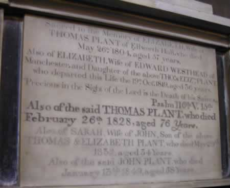 Plant family plaque at St. Mary's Church, Sandbach