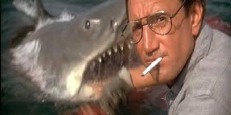 Roy Scheider meets 'Bruce'